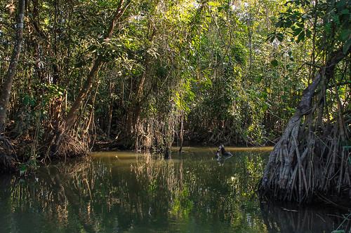 Río Arriba (76)