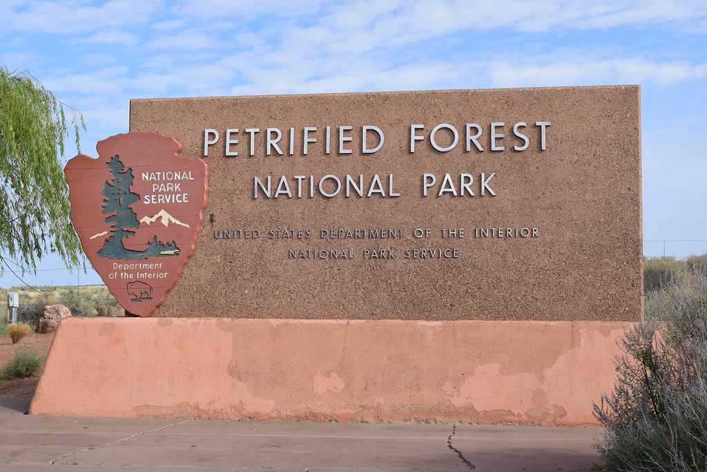 Petrified Forest and Painted Desert National Parks