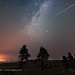 Lone Perseid Meteor at Cypress Hills