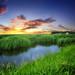 Prairie wetlands 2 by mrbillt6