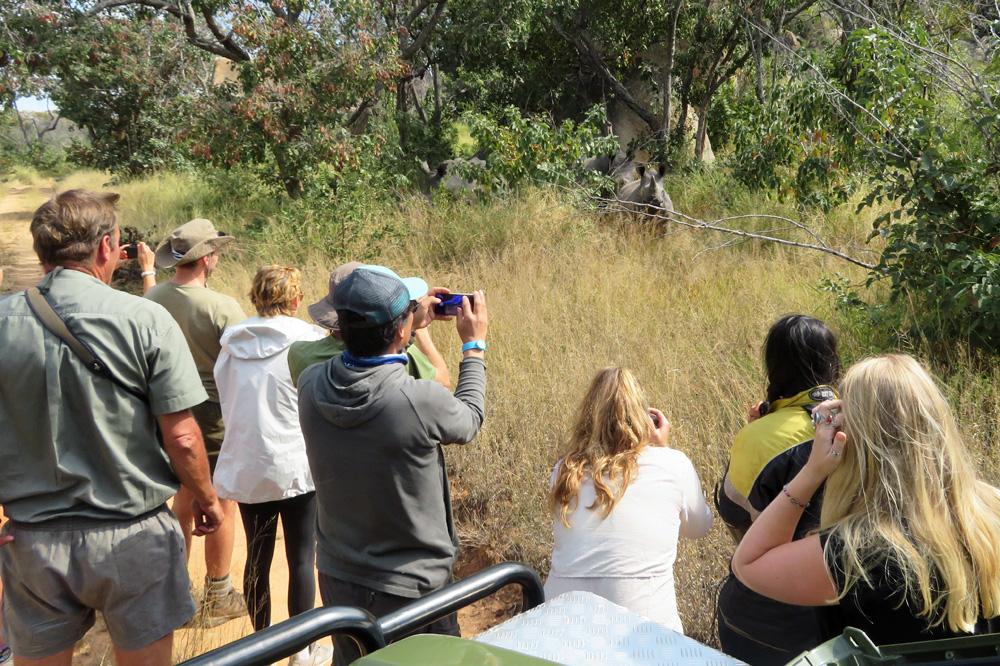 trekking-with-rhinos-zimbabwe