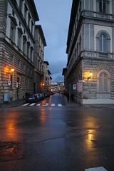 Firenze (Gennaio 2010)