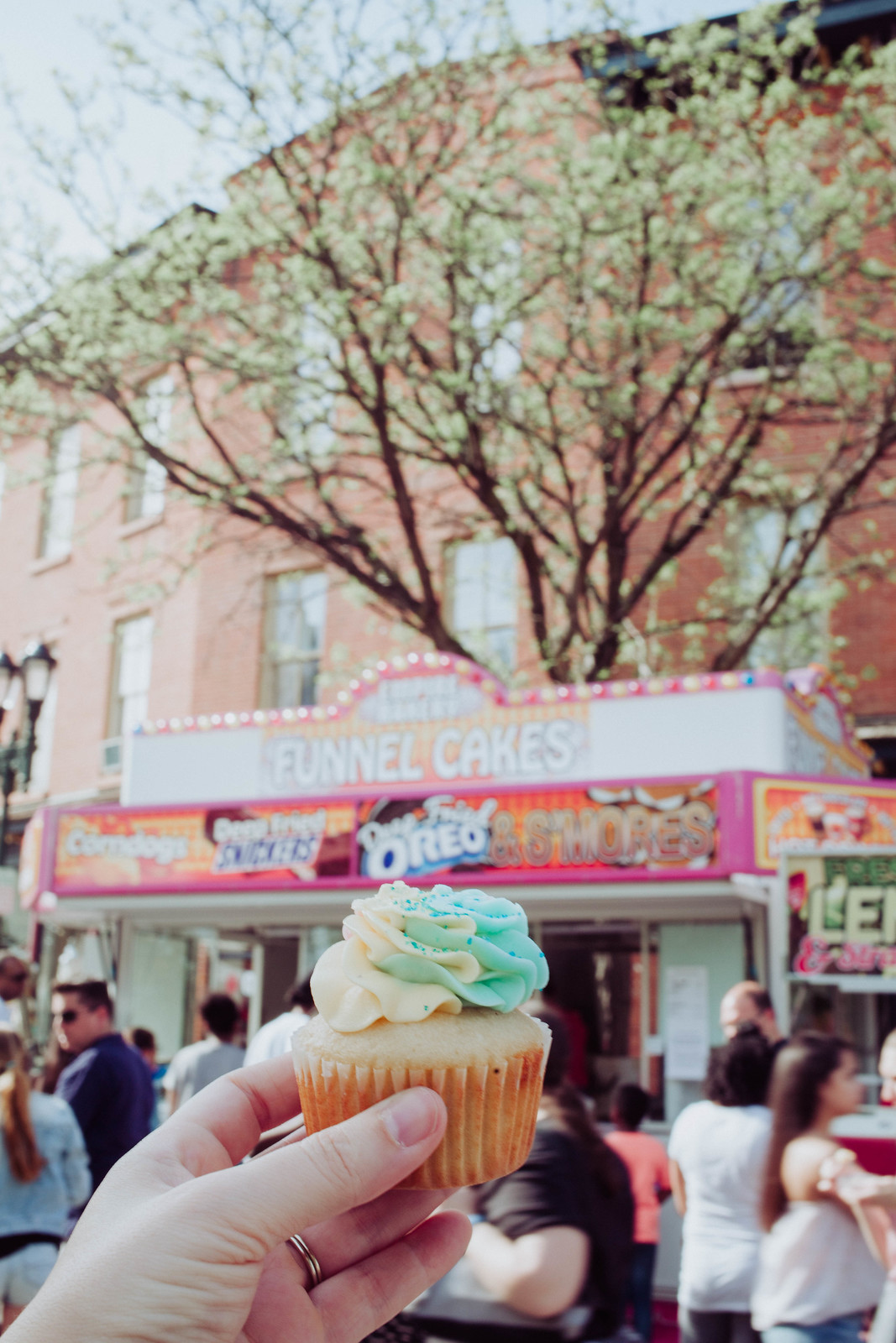 Cupcakes Beacon New York