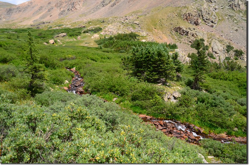 Looking down Smelter Gulch cascade from the trail near 11,480'