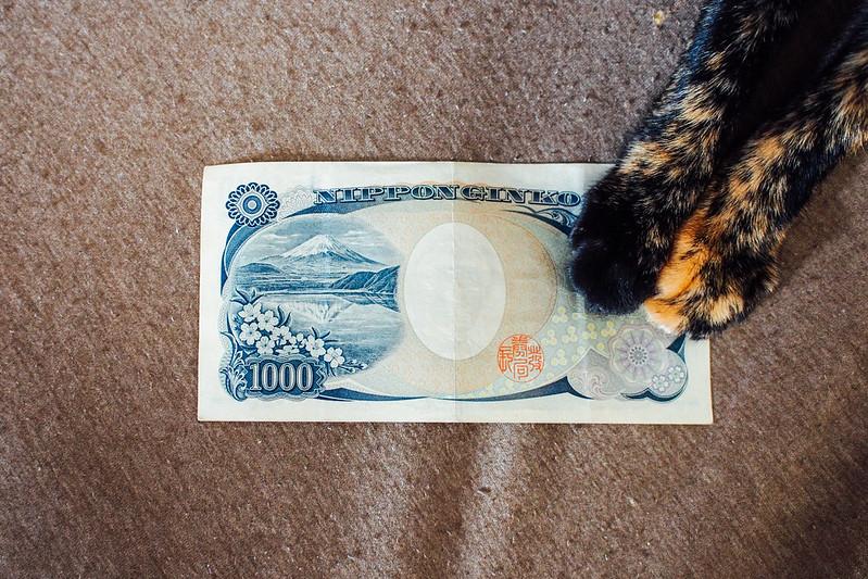 千円小喵喵|大ㄟ