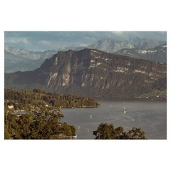 Lucerne 2018 . #leicaQ #leica #leicacamera #leicaqtyp116 #leicacraft #leica_photos #leica_uk #leica_world #leicaphotography #leica_club #twitter #geoffroyschied #35mmofmusic #city #cityscape #luzern #switzerland @ilove_lucerne @lucernefestival #vierwaldst