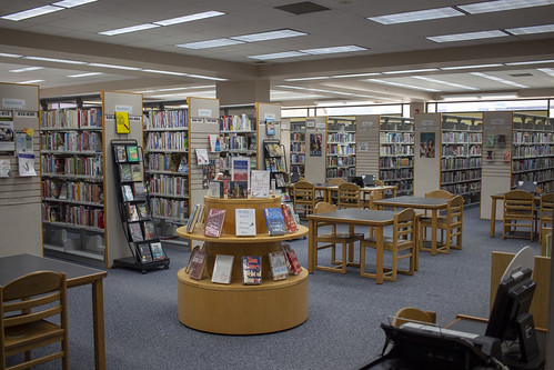 Adult books and seating