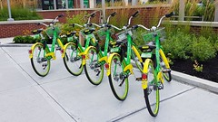 Needham Street Lime Bikes