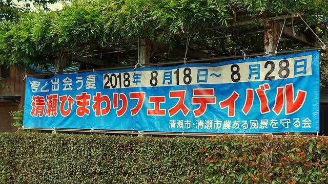 清瀬向日葵フェスDSC00250-01
