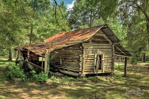 amitecity louisiana unitedstates us barn log logbarn hwy16 la weathered abandoned fallingdown