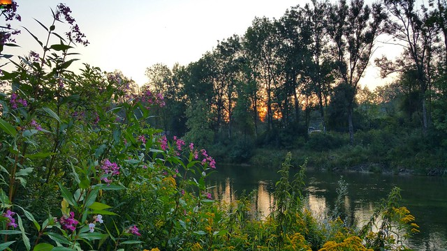 Bei Sonnenaufgang im unteren Illertal - Sunrise in the lower Illertal - Lever du soleil dans le bas Illertal