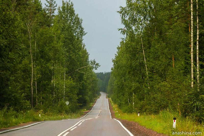 Одна из дорог на Карельском перешейке