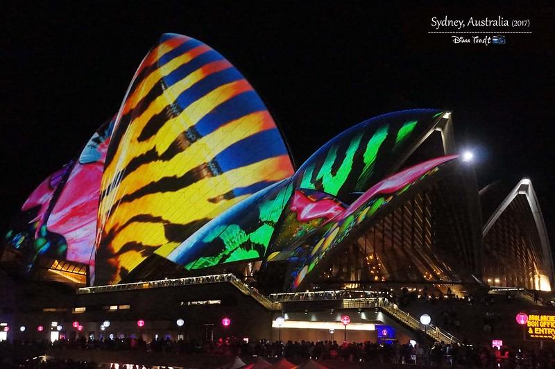 2017 Vivid Sydney 12