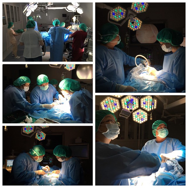 POLO腹腔內視鏡手術