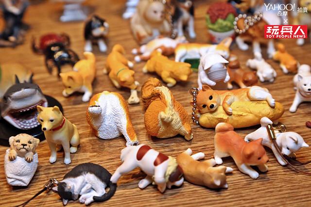 """扭蛋啊~感謝你來到這個世界上! 扭蛋玩家""""喀加喀加研究室"""" - 《Yahoo 奇摩拍賣 × Toyscrazy:大人味玩具》"""