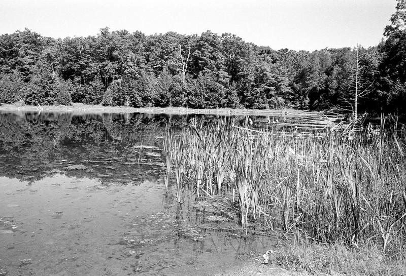 McKarsten's Lake