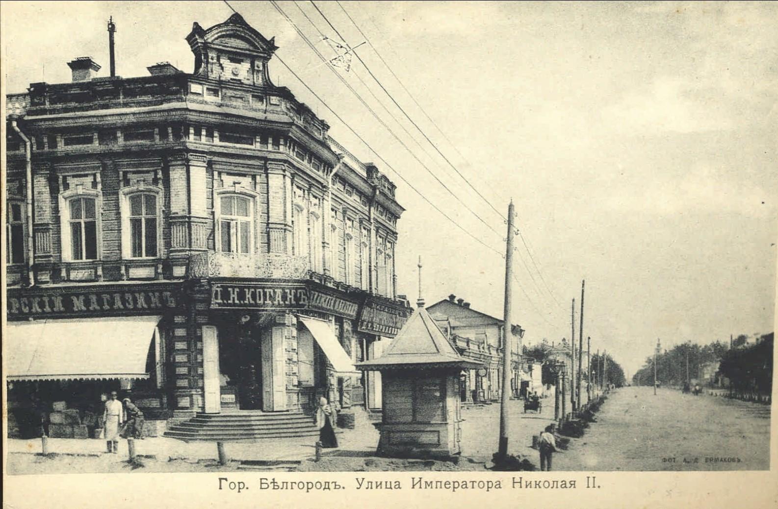 Улица императора Николая II (3)
