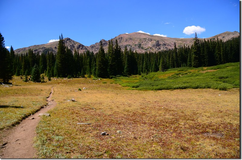 Chief Mountain from the third meadow
