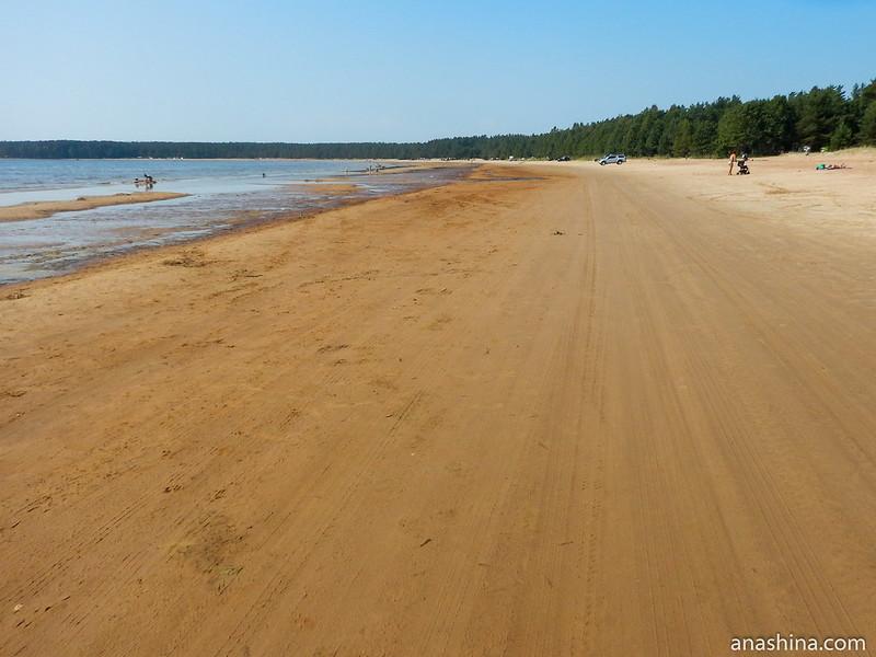 Берег Балтийского моря, Ленинградская область