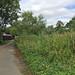 Cricketfield Road, West Drayton