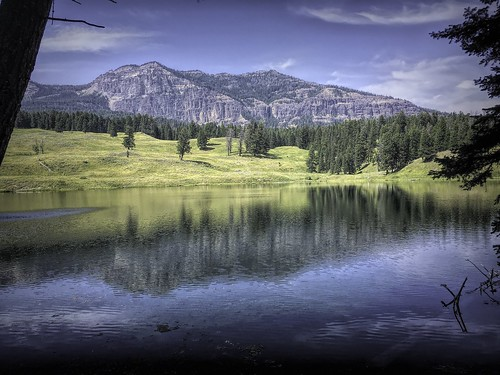 Trout Lake Reflections-Edit