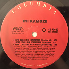 NI KAMOZE:HERE COMES THE HOT STEPPER(LABEL SIDE-A)