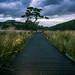 Dusk Walk To Ullswater