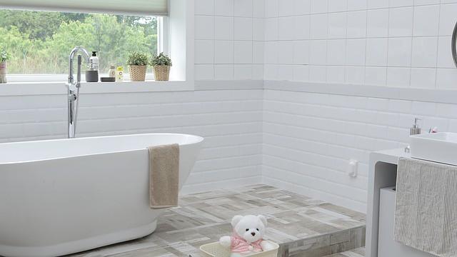 bathroom-1872193_640