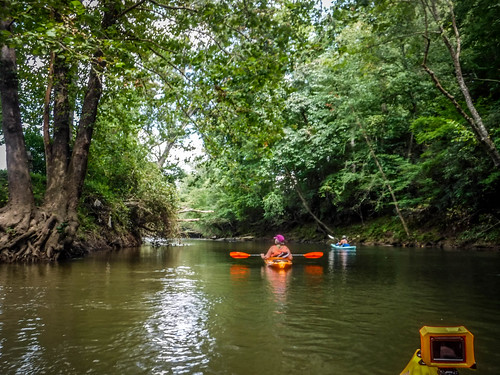 French Broad River - Rosman to Island Ford-228