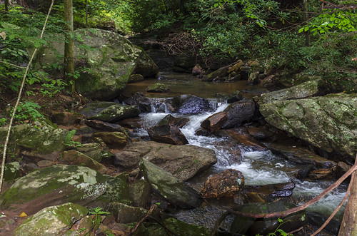 north pacolet river saluda carolina the south water forest woods hike hiking outdoor landscape