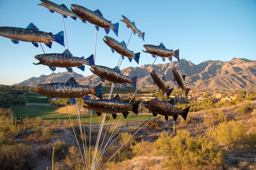 Art at Hacienda del Sol | Tucson Hotel