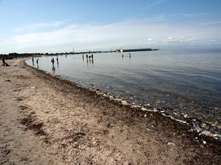 Malmo beach