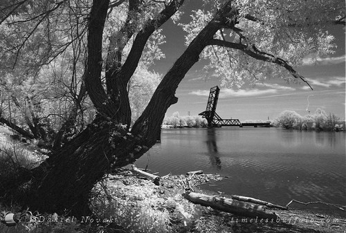 Railroad Bridge over Buffalo River (NFE_0268)