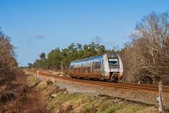11 janvier 2015 B 81829 Train 721101 Saintes -> St-Mariens-St-Yzan Corignac - Photo of Jussas