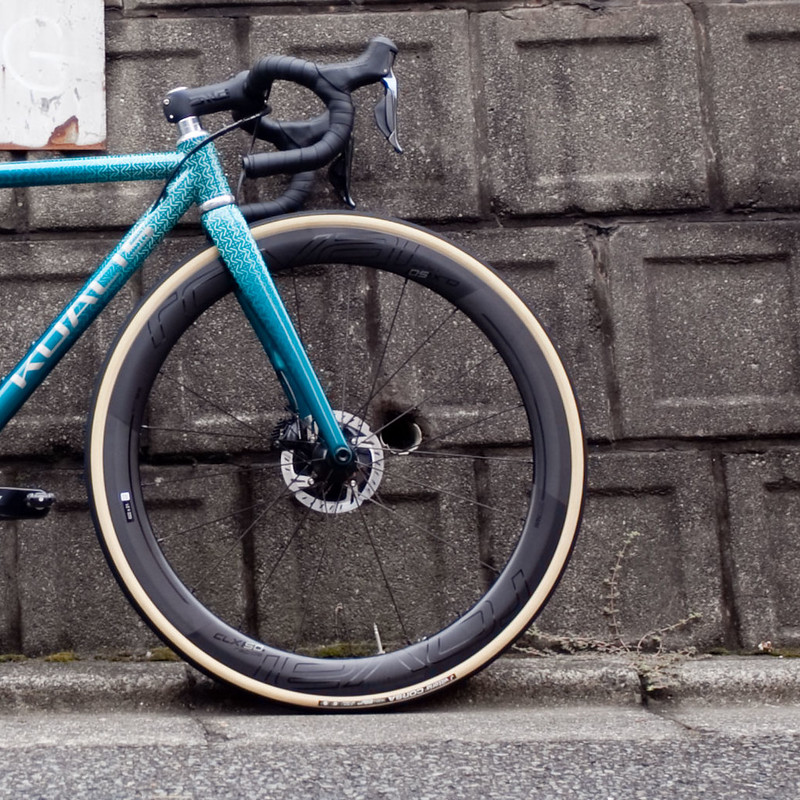 Kualis Cycles Titanium Road Frame & Enve Carbon Fork Designed and Painted by Swamp Things.