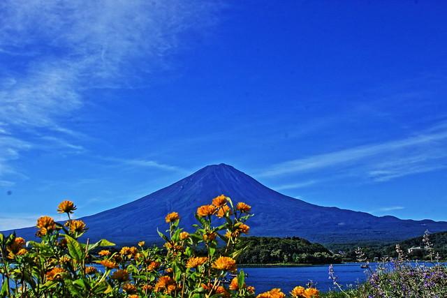 Mt.Fuji Oishi Park