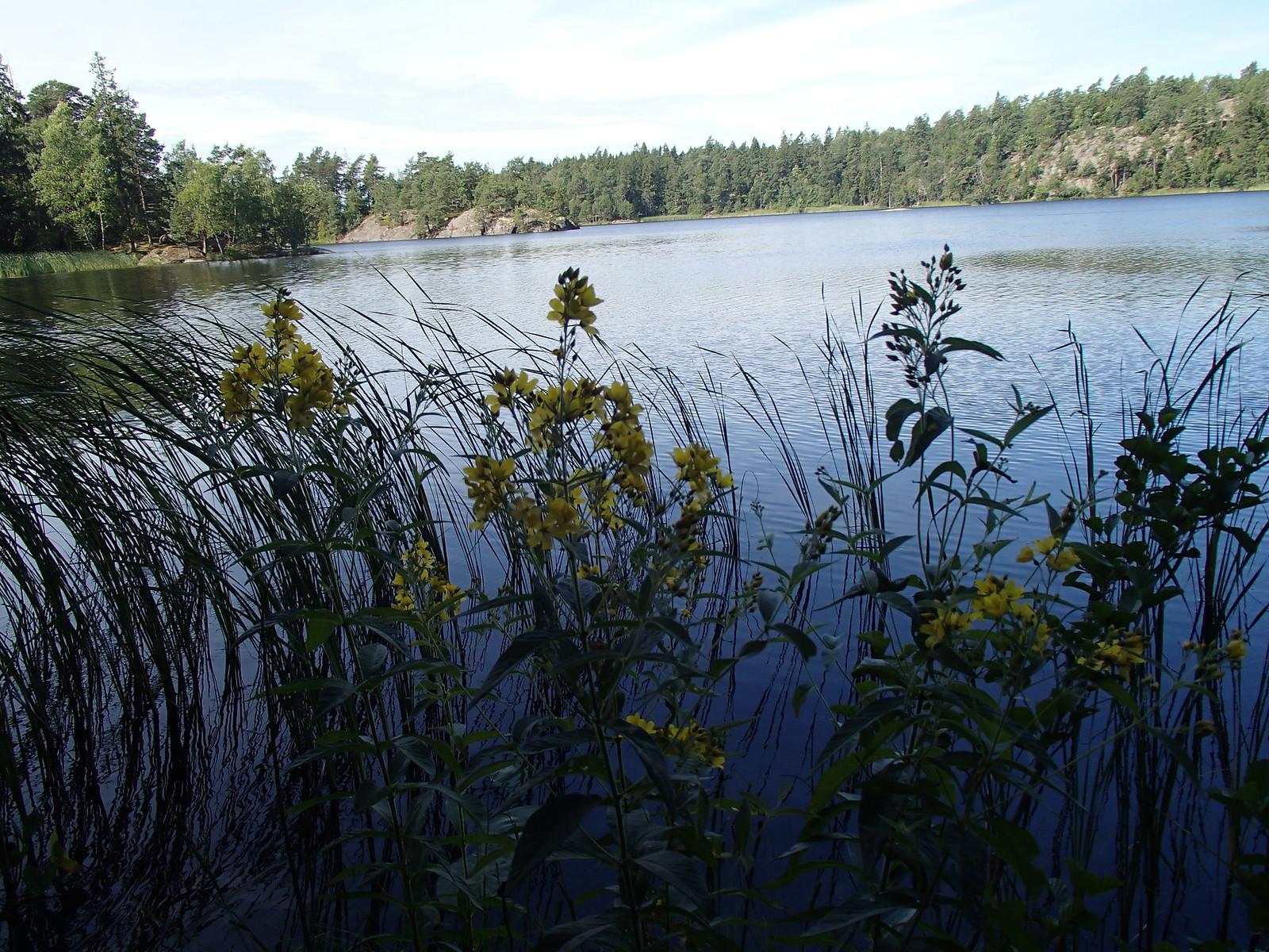 SÖ E5.2 Fjättersjön1