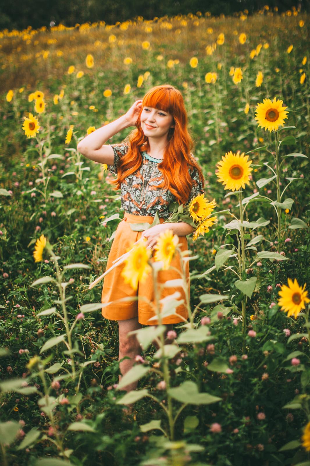 sunflower field-9