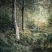 Burnham Beeches by tobchasinglight