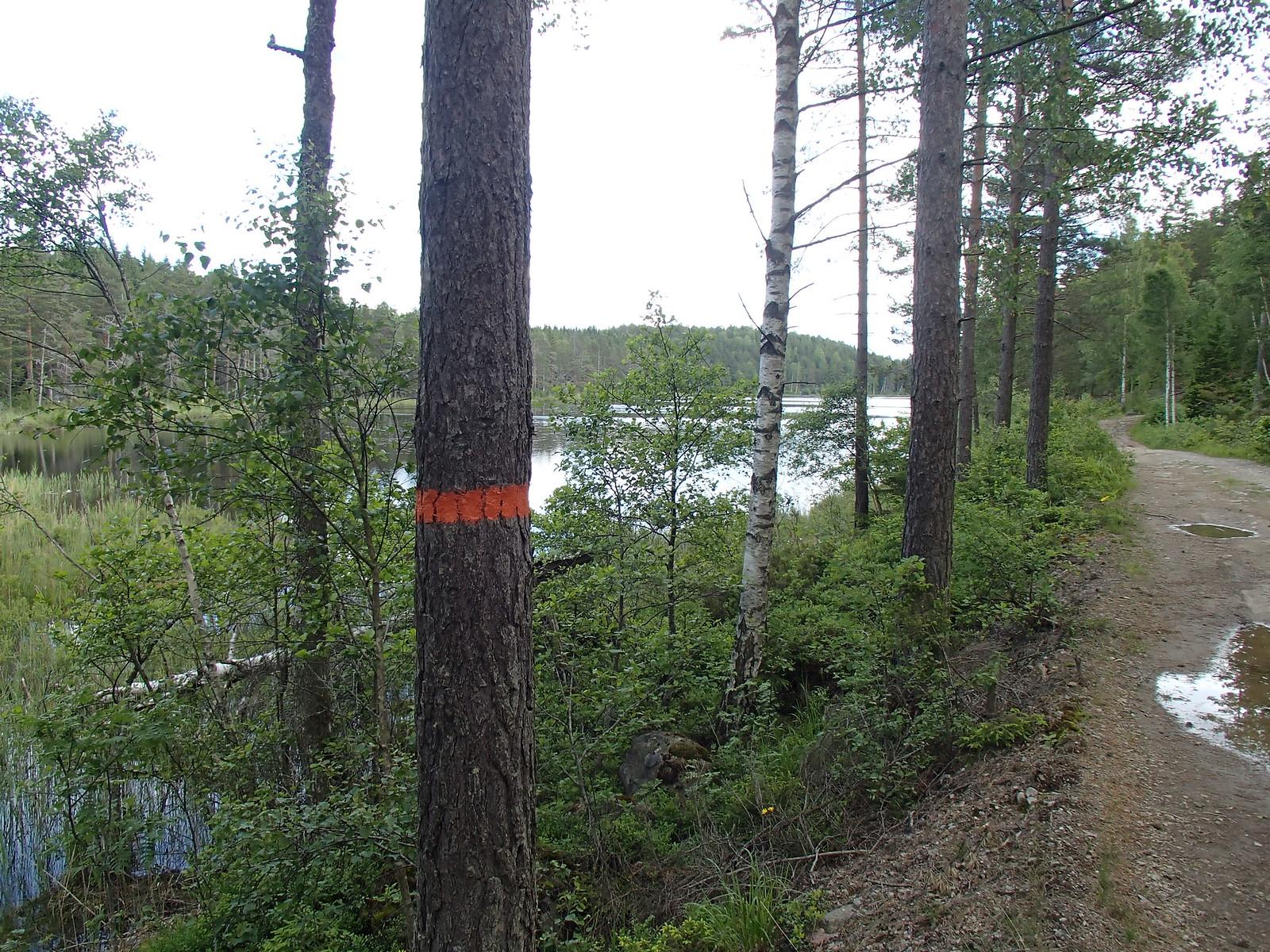SÖ E6 Kärrsjön skymtar