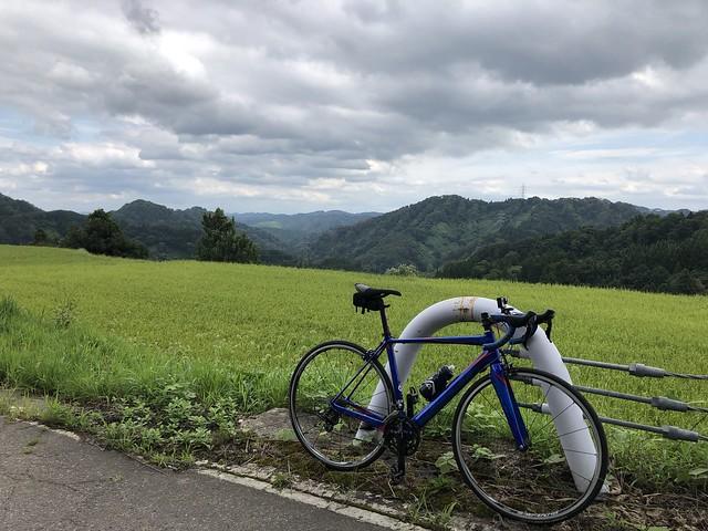 ツールド妻有 青い自転車