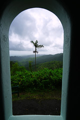 View from the window of Yocahu Tower, El Yunque