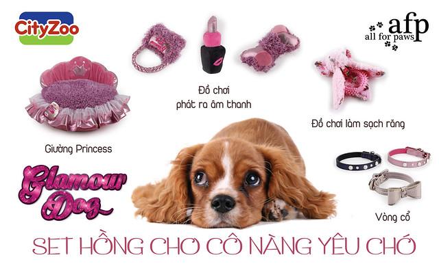 phu-kien-hong-cho-cho