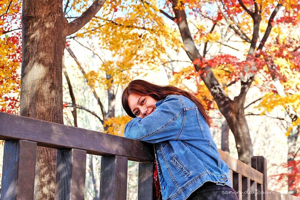 seoul_grand_park_autumn