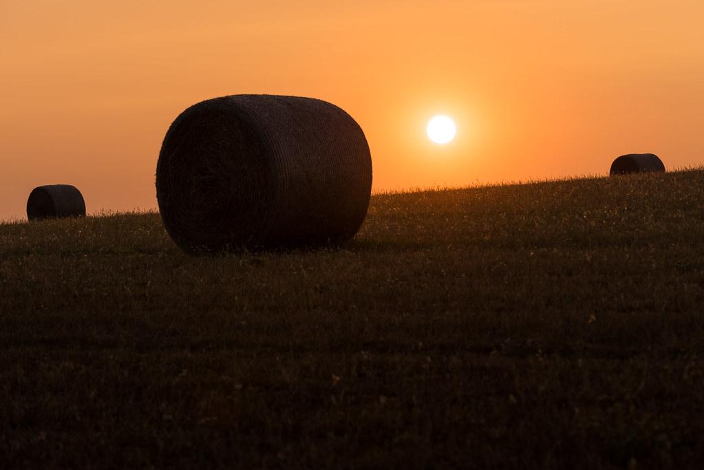 Puesta de sol_Secandonos al sol_David Torralba