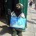 Advertising Bear, Great Pulteney Street, Bath 5 September 2018