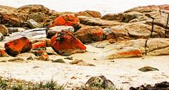 Fire rocks, Freycinet Peninsula, Tasmania