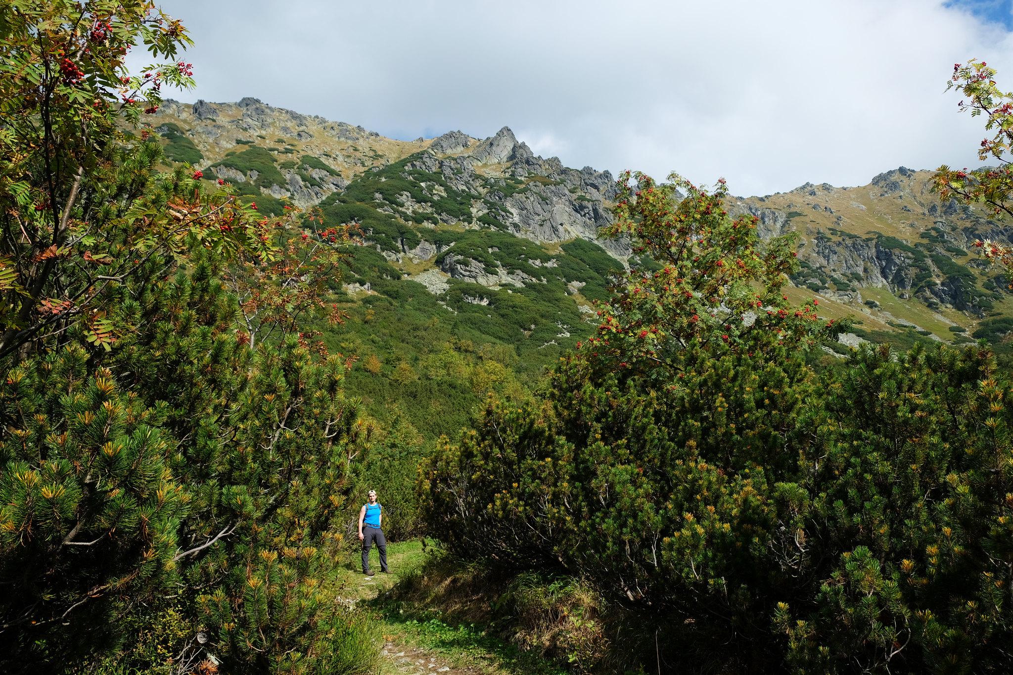 Kôprová dolina, High Tatras