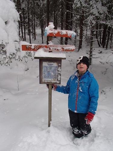 SÖ E15.2 Snöig