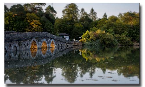 bridge golden sun sunshine goldenhour river landscape cobh cork ireland